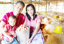 """""""ขยายฟาร์มไก่อารมณ์ดีทั่วดอยวาวี"""" เทสโก้ ส่งเสริม-รับซื้อไข่ส่งขายทั่วไทย"""