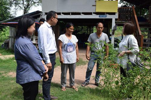 รศ.ดร. จุรีย์รัตน์ ลีสมิทธิ์ รองผู้อำนวยการ ศูนย์เกษตรหนึ่งใจ (คนขวา) พาเยี่ยมชมผักพื้นบ้านที่เกษตรกรปลูก