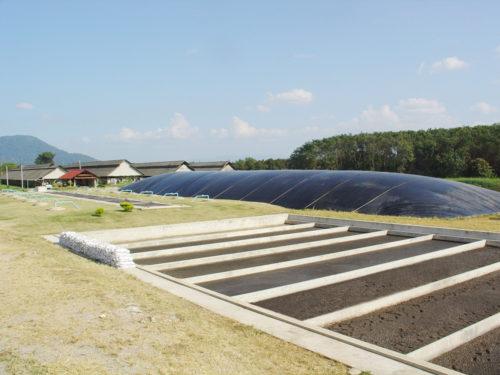 ต้นแบบการทำกรีนฟาร์มรักษ์โลก