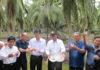 นายสมชาย ชาญณรงค์กุล อธิบดีกรมส่งเสริมการเกษตร นำคณะปล่อยแตนเบียนที่สวนมะพร้ว จ.ราชบุรี