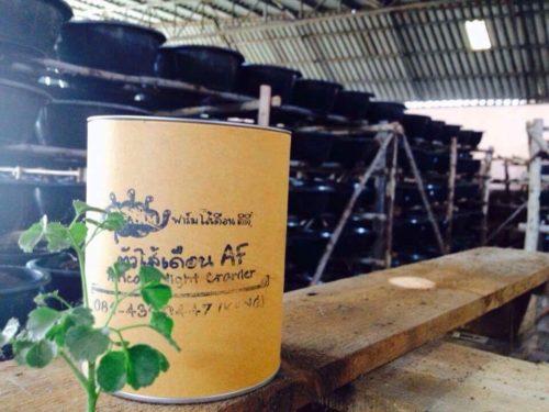 ผลิตภัณฑ์ตัวใส้เดิอนจาก D farm