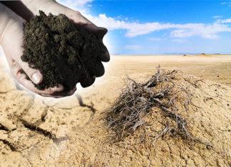 พด. จัดสัมมนาวันแห่งการต่อต้านการแปรสภาพเป็นทะเลทรายโลก ปี 60