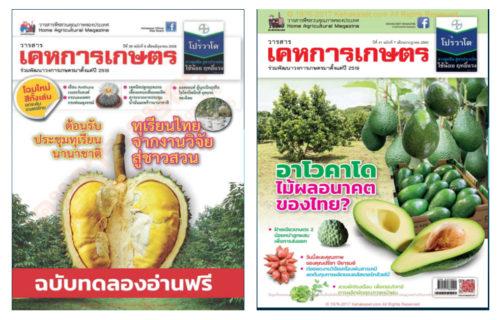 ตัวอย่างหนังสือ Ebook แจกฟรี!! ของเคหะเกษตร