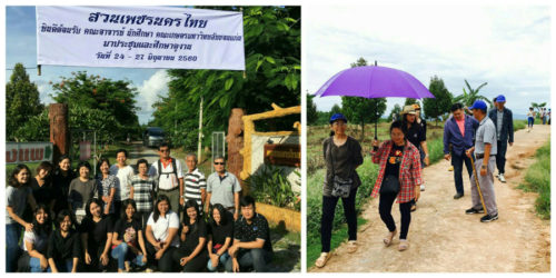 ผู้สนใจมาเยี่ยมชมและศึกษาดูงานการจัดการสวนทุเรียนและผลไม้อื่นๆ