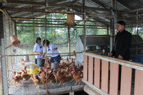 เด็กๆ ใน รร.บ้านคลองยางมูลบนอุปถัมภ์ ช่วยกันให้อาหารไก่ไข่