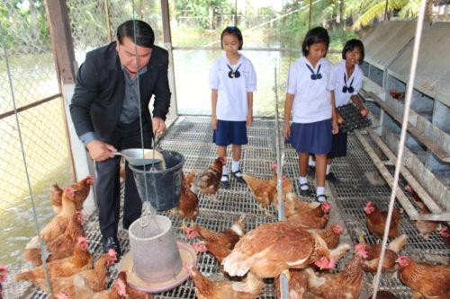นายสมชาติ เดชดอน นายกเทศมนตรีตำบลครบุรีใต้ กำลังช่วยเด็กๆ ให้อาหารไก่ไข่