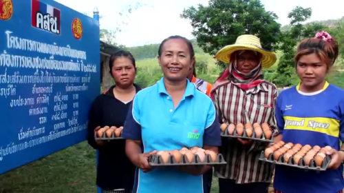 เกษตรกรชุมชนบ้านมาบพิมานพัฒนายิ้มได้ ไก่ไข่ออกผลดีขึ้น