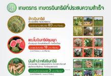 """เปิดแผน 5ปี """"เกษตรอินทรีย์"""" ตั้งเป้าปี 64 ขยายพื้นที่กว่าล้านไร่"""