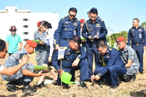ทหารอากาศ เริ่มกิจกรรมปลูกดาวเรือง ให้บานสะพรั่งทั้งแผ่นดิน
