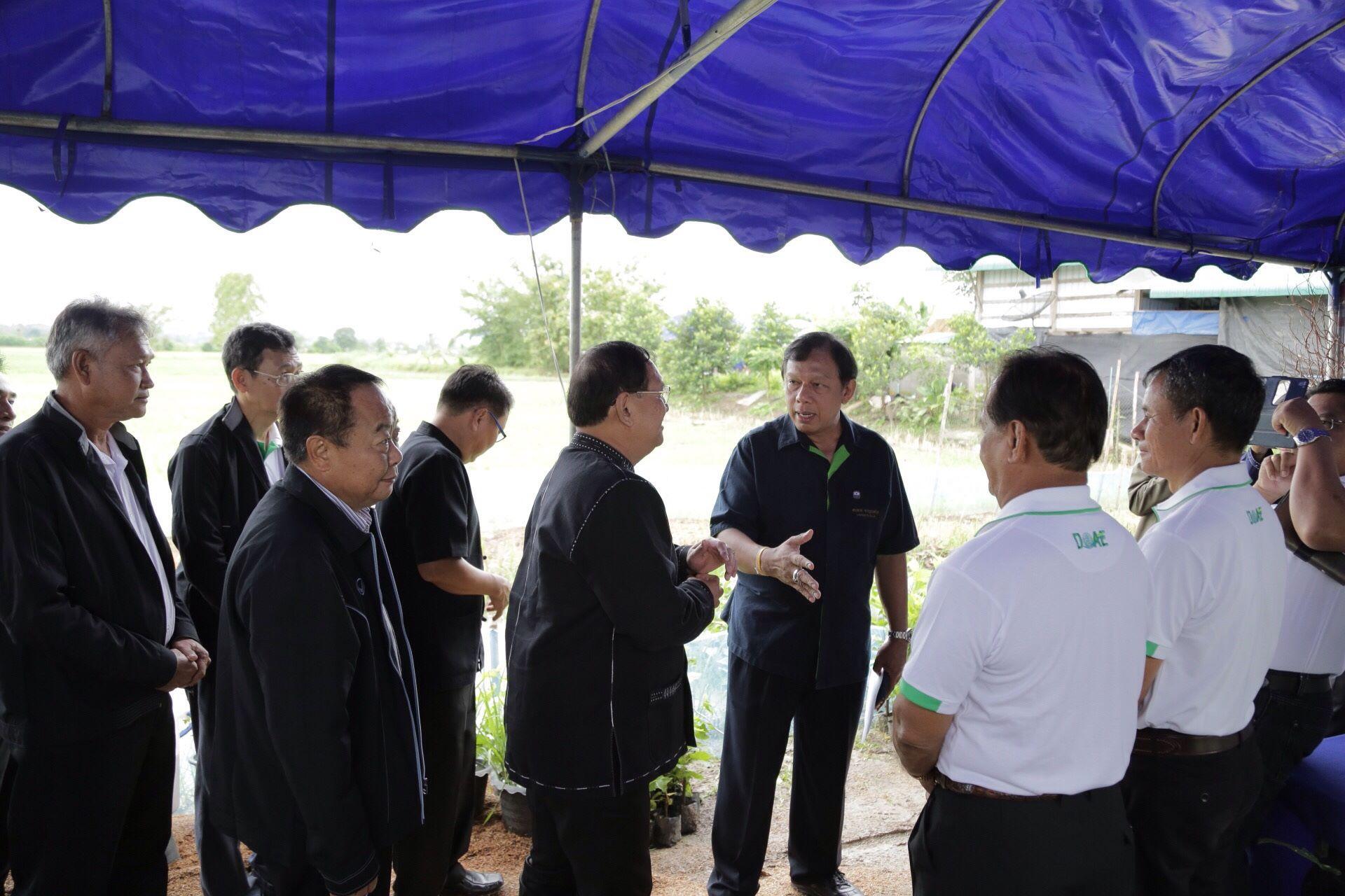 นายสมชาย ชาญณรงค์กุล อธิบดีกรมส่งเสริมการเกษตร กำลังหารือร่วมกันกับหลายภาคส่วน