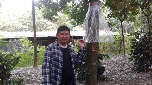 คุณสมจิตร์ บรรณจักร์ เจ้าของสวนยางพาราที่เชียงใหม่ กับมุ้งกันฝนให้ยาง