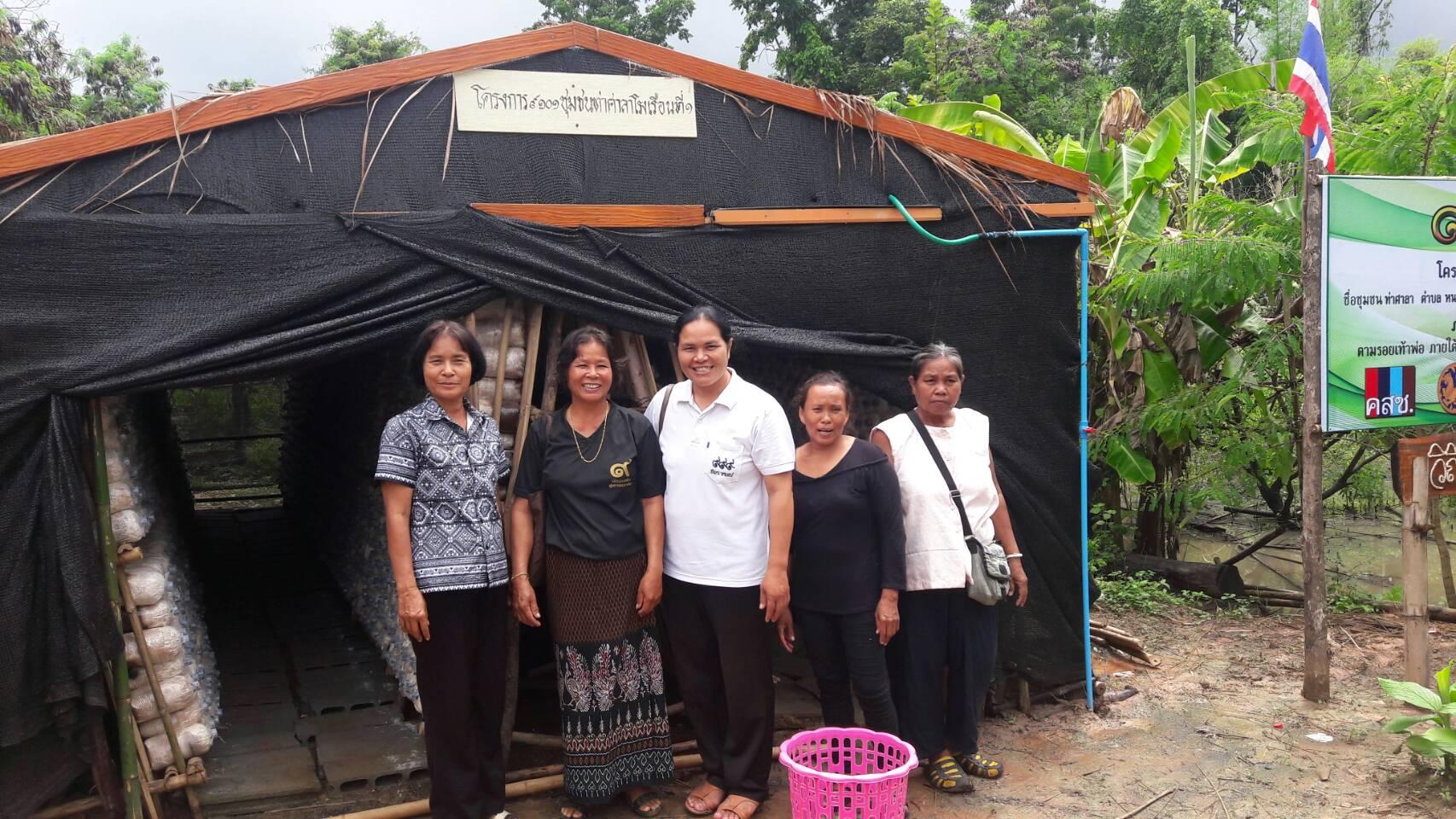 โรงเรือนเพาะเห็ด โครงการ 9101 ชุมชนท่าศาลา