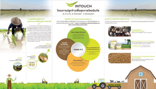 กรอบการทำงานเพื่อเตรียมความพร้อมสู่การเป็นเกษตร 4.0 อย่างเข้มแข็งใน 4 แนวทาง
