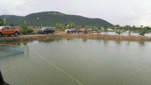 ฟอร์ดพาลุยบ่อปลากราย