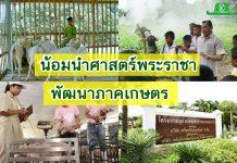 มูลนิธิพัฒนาชีวิตชนบทฯ เครือซีพี และซีพีเอฟ น้อมนำศาสตร์พระราชาร่วมพัฒนาสังคมไทย