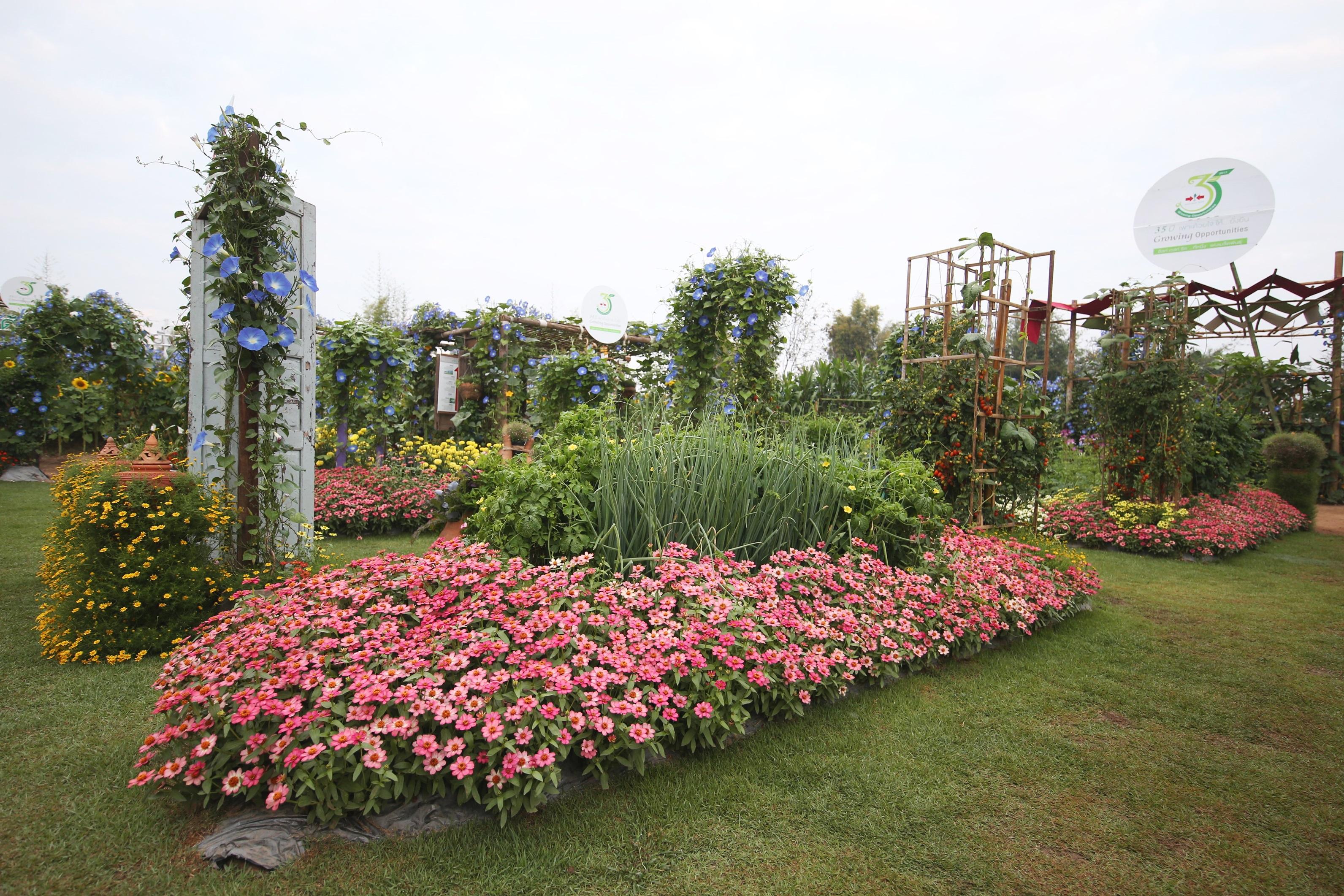 นวัตกรรมการพัฒนาสายพันธุ์พืชผักและดอกไม้ที่ตระการตามากว่า 200 สายพันธุ์ในพื้นที่กว่า 20 ไร่