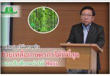 """""""อาชีพปลูกไม้เศรษฐกิจช่วยเหลือเกษตรกรได้ดีที่สุด""""นายจงคล้าย วรพงศธร รองอธิบดีกรมป่าไม้ กล่าว"""