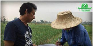 """ต้อน """"ล้งผลไม้"""" เข้าสู่ระบบเกษตรพันธสัญญา ก.เกษตรฯ เผยยอดจดแจ้ง 159 รายแล้ว"""