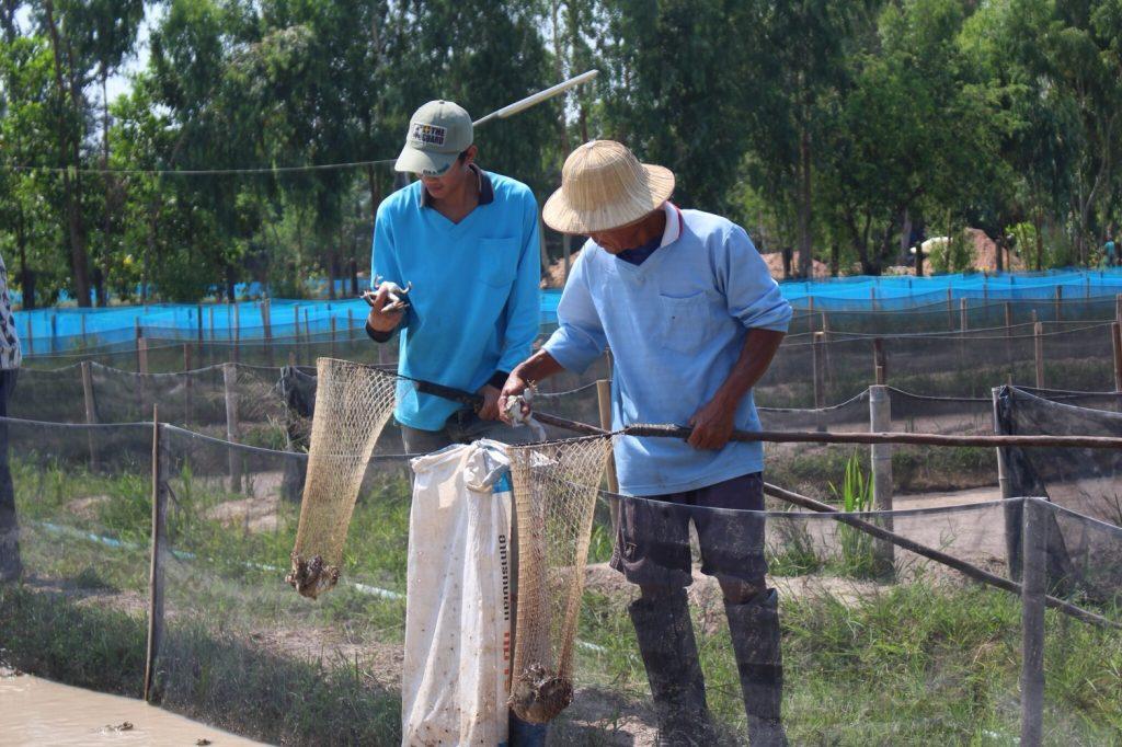 """เพาะเลี้ยง """"ลูกอ็อดกบ"""" นครพนมเฮ!...เข้าสู่ระบบเกษตรแปลงใหญ่ด้านประมงแห่งแรกของไทย"""