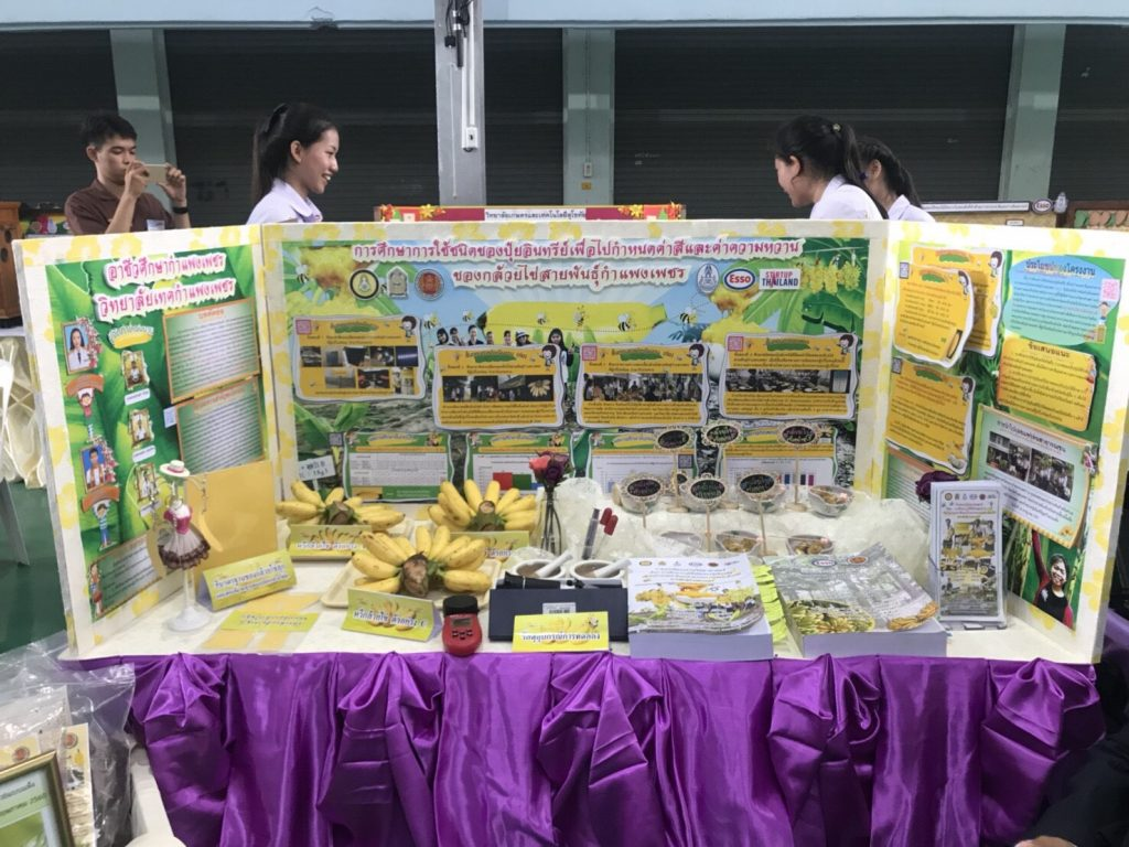 กล้วยไข่ชนะเลิศโครงงานวิทย์ เข้าชิงระดับประเทศ สิงหาฯ นี้