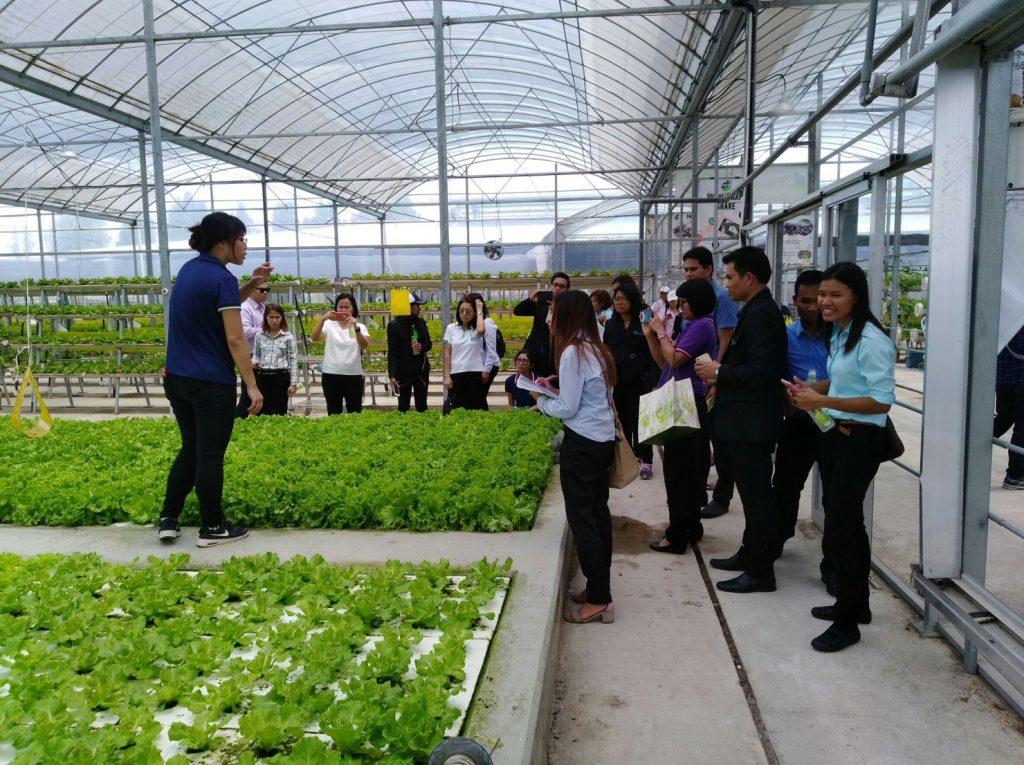 เกษตรกรรุ่นใหม่ ศึกษาดูงาน