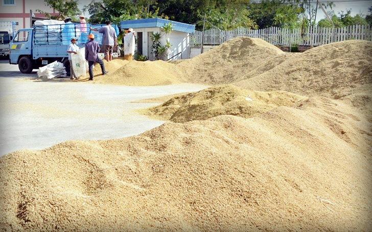 """ทุ่ม 2 หมื่นล้าน """"เสิร์ฟสารพัดเมนูอาชีพ"""" สร้างรายได้-พัฒนาอาชีพเกษตรกรทั่วประเทศ"""