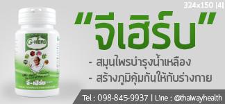 thaiway-จีเฮิร์บ