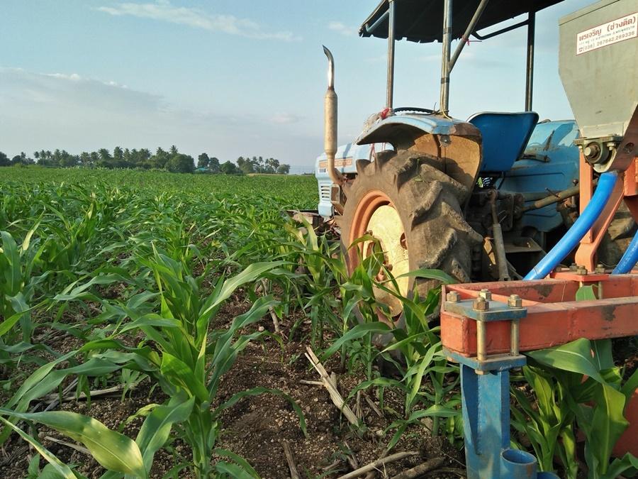 เกษตรฯ ชงแผนพัฒนาระบบเกษตรพันธสัญญา เข้าครม.เห็นชอบภายใน 4 เดือน