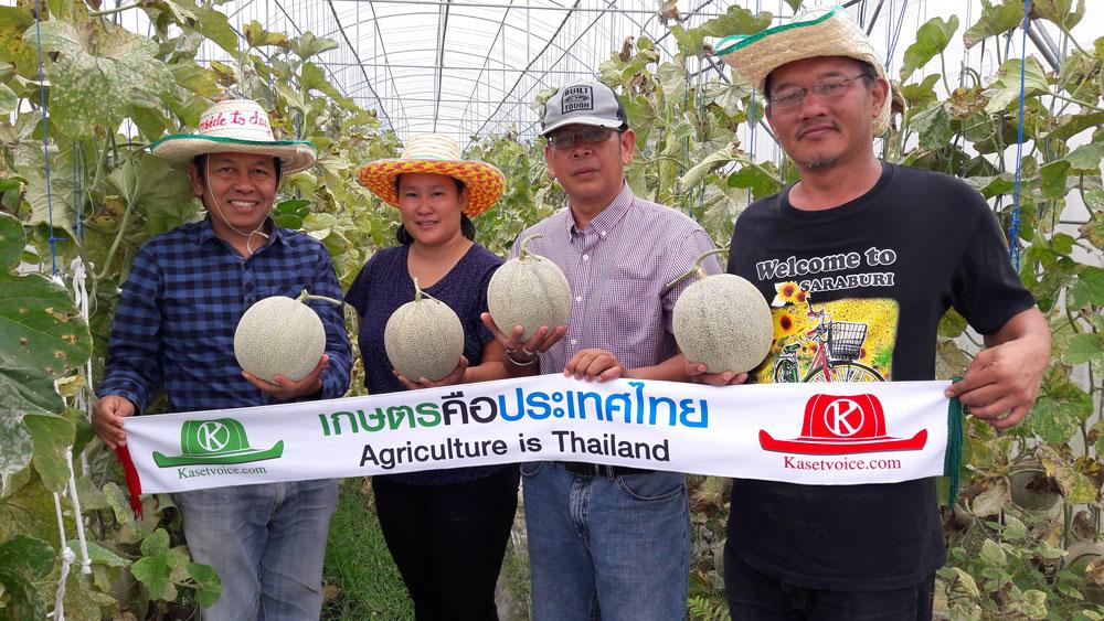 พบ Young Smart Farmer (TSF) เกษตรกรรุ่นใหม่ผู้ปลูกเมล่อนแห่งจ.เชียงใหม่