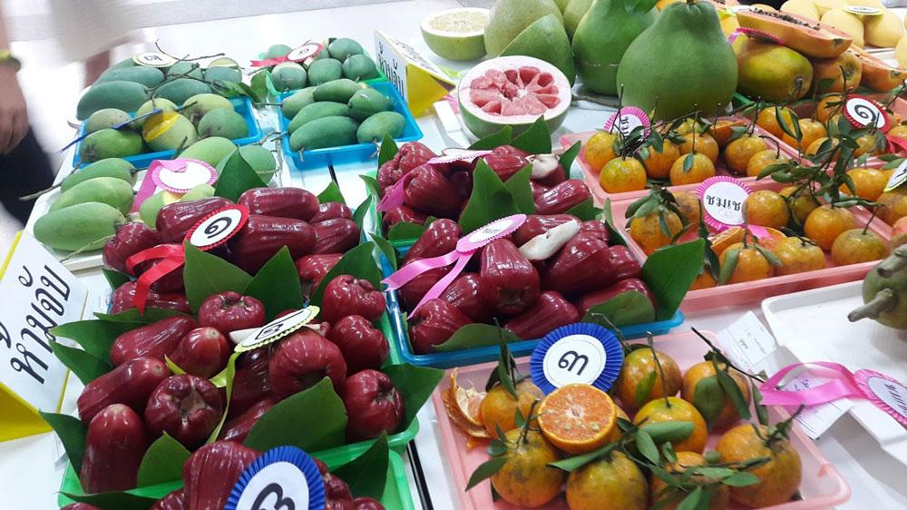 ผลประกวดผลไม้ เกษตรแฟร์ 2562