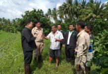 """เกษตรฯ ลุยผลิตชีวภัณฑ์ ช่วยเกษตรกรประสบภัยจากพายุ """"ปาบึก"""""""