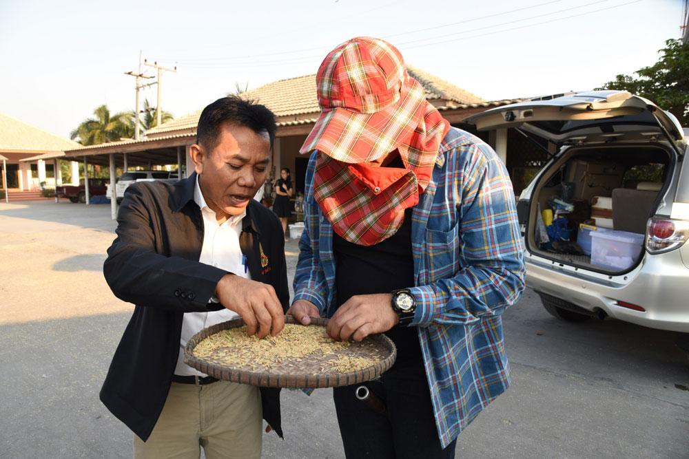 เร่งแก้ปัญหาข้าวปนทำลายชื่อเสียงข้าวหอมมะลิ
