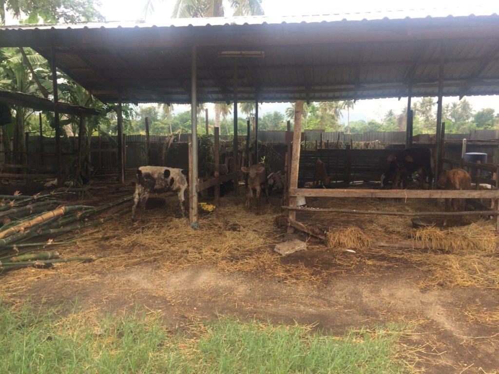 สศก. ลงพื้นที่เพชรบุรี ติดตามโครงการยกระดับมาตรฐาน ดันเกษตรกรสู่ GAP