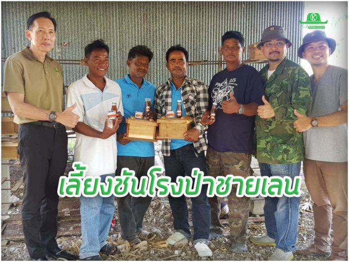 ซีพีเอฟ ชูป่าชายเลนสร้างอาชีพเสริมเลี้ยงชันโรง เพิ่มรายได้ให้ชาวประมงสงขลา