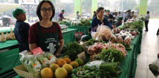 ตลาดเกษตรกรถาวรเมืองรถม้า ต้นแบบตลาดสินค้าคุณภาพ