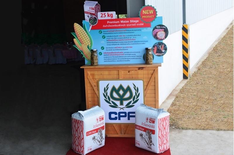 ซีพีเอฟผนึกกำลัง ธุรกิจพืชครบวงจร และ CP-Meiji เปิดศูนย์ผลิตอาหารหยาบสำหรับโค หนุนเกษตรกรผลิตน้ำนมคุณภาพสูง