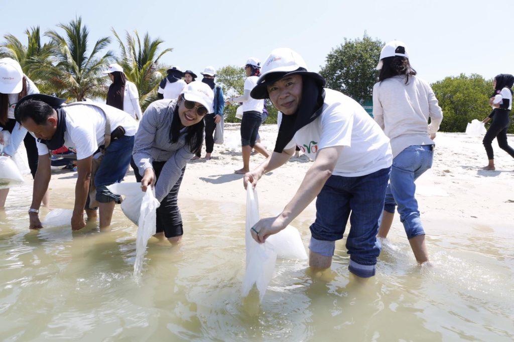 CPRAM ร่วมอนุรักษ์พันธุ์สัตว์น้ำทะเล ปล่อยลูกพันธุ์ปูม้ากว่า 100,000 ตัว คืนสู่ธรรมชาติ