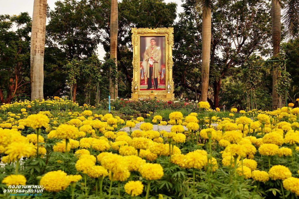 ม.เกษตรฯ ปลูกต้นรวงผึ้งเฉลิมพระเกียรติ พระราชพิธีบรมราชาภิเษก พ.ศ. 2562