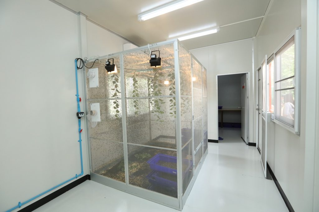 เบทาโกรจับมือ มข. ขับเคลื่อนอุตสาหกรรมแมลง มุ่งมั่นลดปัญหาสิ่งแวดล้อม ต่อยอดนวัตกรรมโปรตีนคุณภาพสูงในอาหารสัตว์