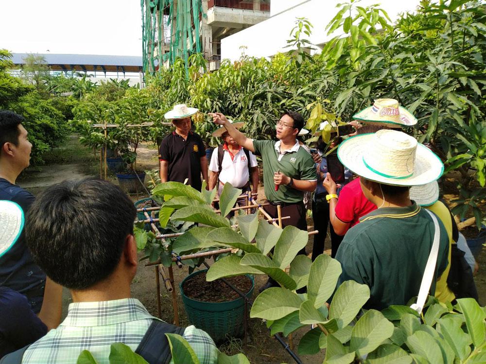 บรรยากาศห้องเรียนกลางสวนในรุ่นแรก 26 มีนาคม 2562