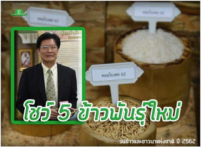 เปิดโชว์ 5 ข้าวพันธุ์ใหม่ เฉลิมพระเกียรติ ร.10 งานวันข้าวและชาวนาแห่งชาติ ปี 2562