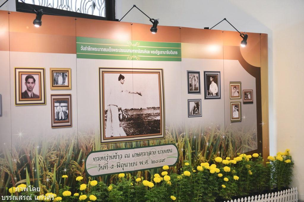 ม.เกษตรฯ จัดงานวันรำลึกทรงหว่านข้าว ณ เกษตรกลาง บางเขน