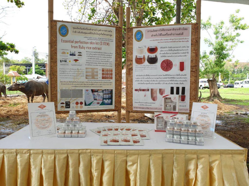 กระทรวงเกษตรฯ โดยกรมการข้าวจัดงานวันถ่ายทอดเทคโนโลยีการผลิตข้าวระดับประเทศ เนื่องในวันข้าวและชาวนาแห่งชาติ ปี 62
