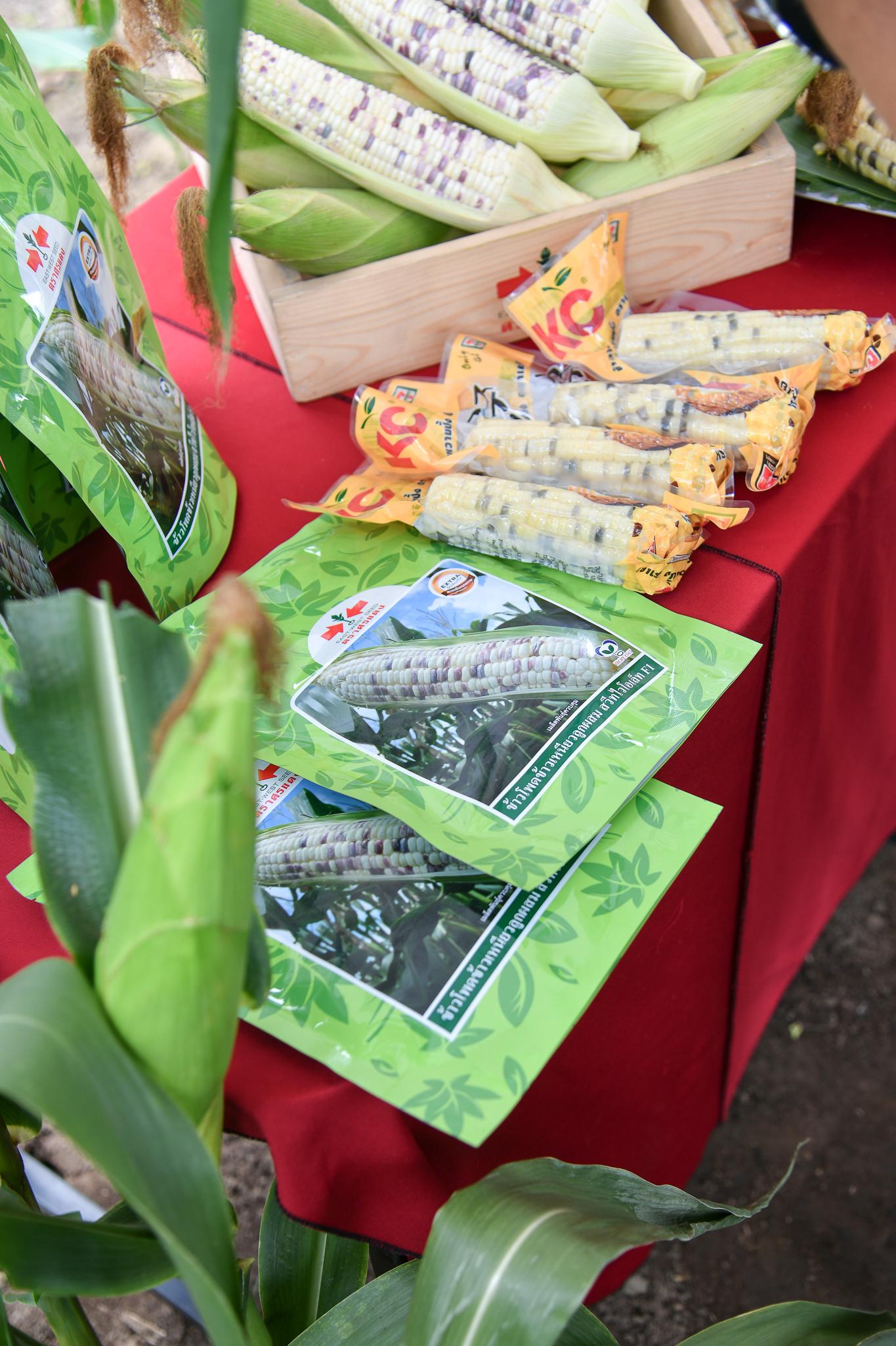 ศรแดงผนึกกำลังซันสวีท พัฒนาตลาดข้าวโพดข้าวเหนียว สู่ร้านสะดวกซื้อทั่วไทย