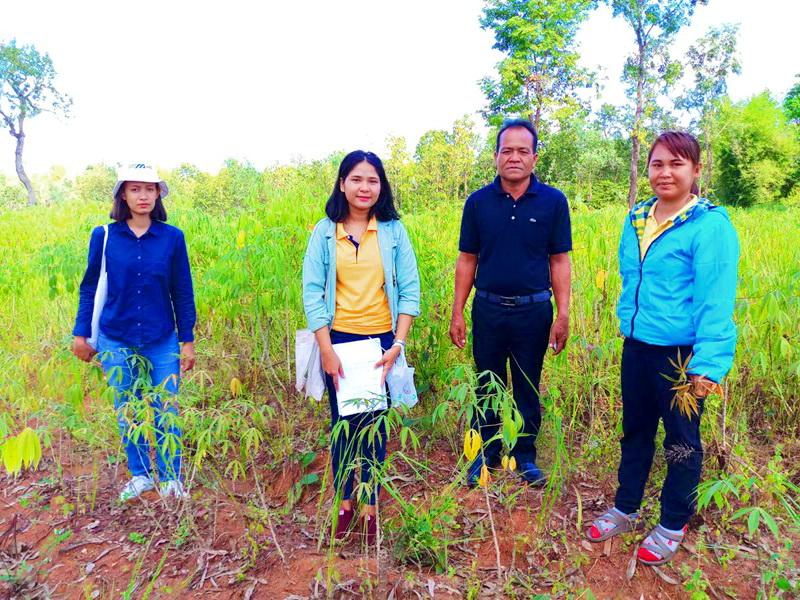 กรมส่งเสริมการเกษตรเผยมาตรการช่วยเหลือเกษตรกรผู้ประสบแล้งและฝนทิ้งช่วง ปี 2562