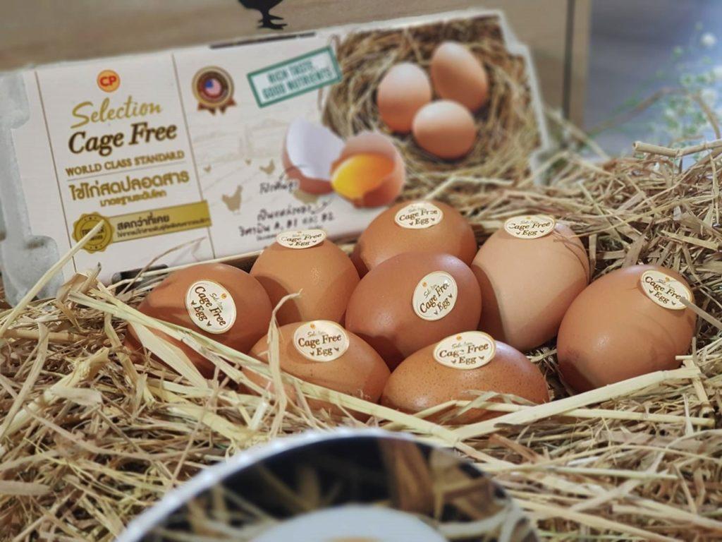 โม โม พาราไดซ์ จับมือ ซีพีเอฟ เสิร์ฟไข่ไก่สดปลอดสาร CP Selection Cage Free Egg