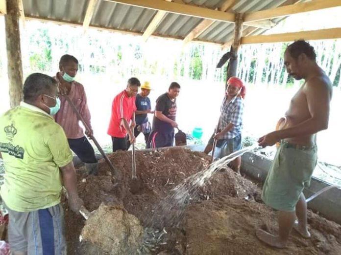 เกษตรกรชาวสวนยาง พลิกวิกฤติเป็นโอกาสใช้ความรู้ทางบัญชีปรับวิถีทำการเกษตร