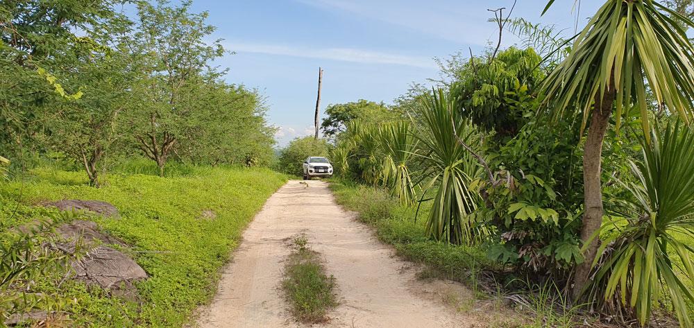 เส้นทางท่องเที่ยวกลางสวนมะขามเปรี้ยวยักษ์...