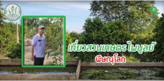 ชวนเที่ยวเกษตร..แวะสวนเกษตรไพบูลย์ เลาะสันเขาผลไม้ จ.พิษณุโลก