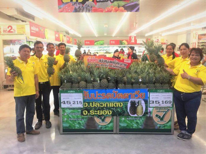 แม็คโคร ดันสับปะรดพันธุ์ปัตตาเวียของดีภาคตะวันออก สู่มาตรฐาน Thai GAP คัดสรรคุณภาพขายทั่วไทย ชาวไร่ยิ้มรับสารทจีนยอดโต 3 เท่า โกยโชคลาภช่วงเทศกาล